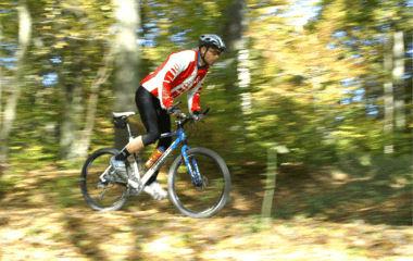 Bikewald
