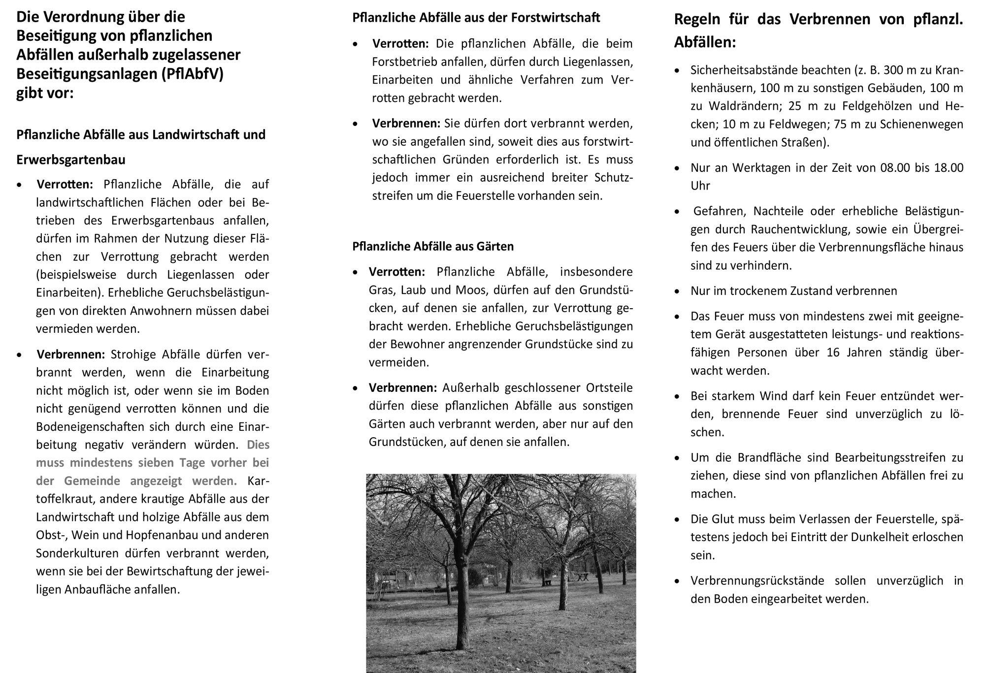 Infoblatt Nr. 06 - Beseitig ung pflanzlicher Abfälle-2