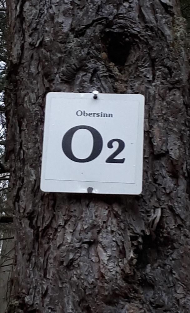O2-Obersinn